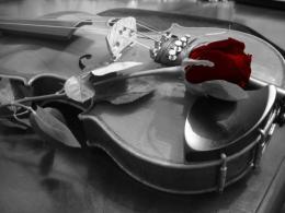 Musicos por la Conciencia